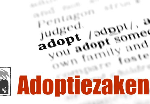 Arierang Adoptiezaken | Arierang Adoption Affairs